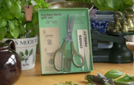 Kitchen Herb Scissors Gift Set